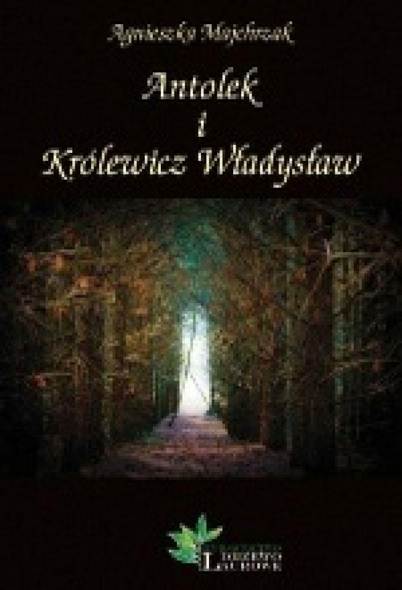 Znalezione obrazy dla zapytania Antolek i Królewicz Władysław